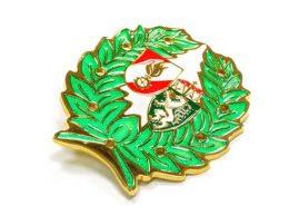 Colorful Custom Metal Badge