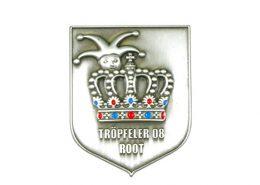 Custom Shield Shape Pin Badge