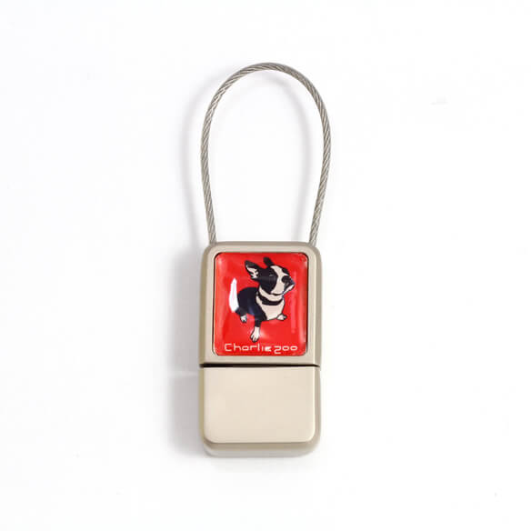 Custom Logo USB Flash Drives with Cable