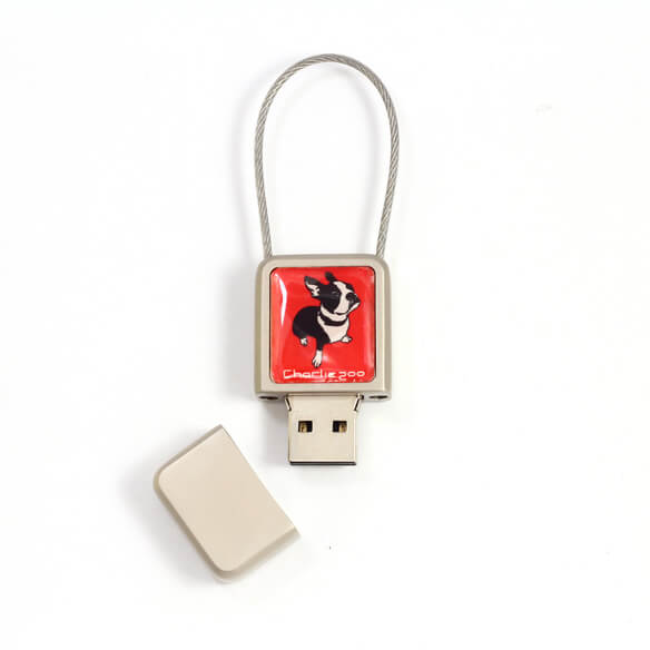 USB Flash Drives with your brand logo
